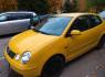 Volkswagen Polo 2004 m., Hečbekas